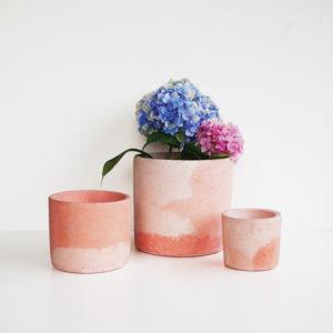 Kolekcija Flamingo